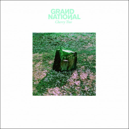015 - SBEST15 - GRAND NATIONAL - Cherry Tree