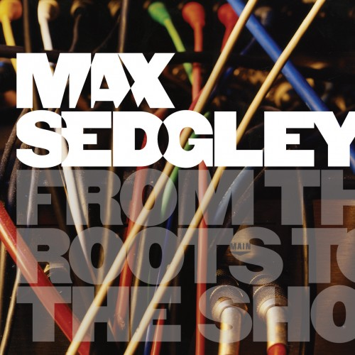 SBESTCD11 - MAX SEDGLEY - From The Roots To The Shoots